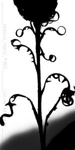 Clic-Art-Nature_4031a