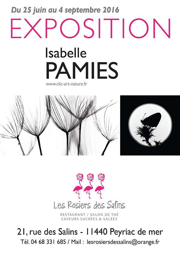 AfficheA4-Ipamies